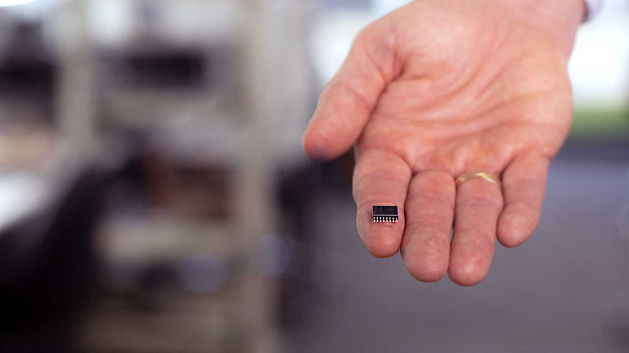 tiny-chip-in-hand